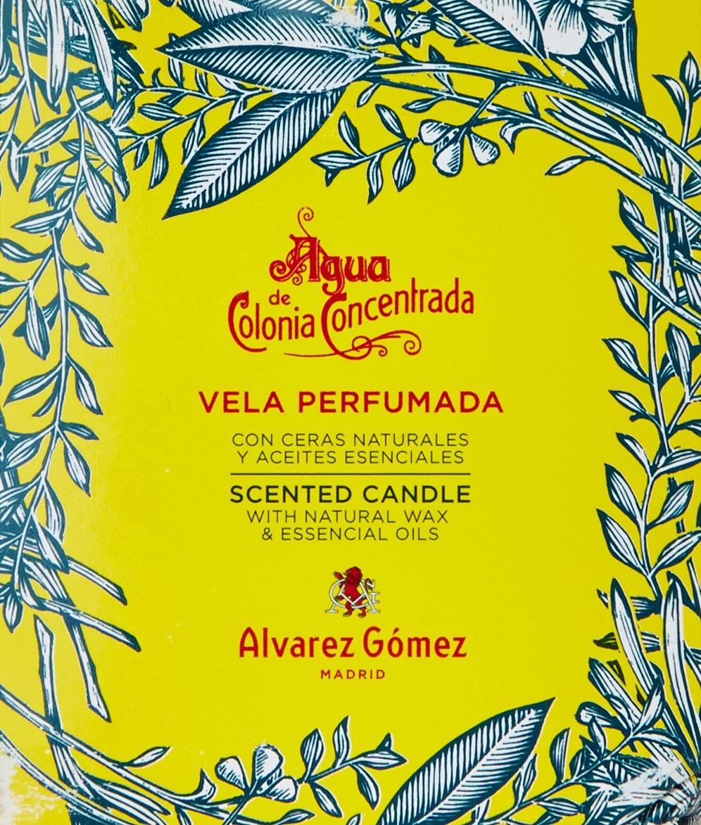 Álvarez Gómez - Vela Perfumada aroma Colonia Clásica con toques de Sándalo y Canela- 120 gr: Amazon.es: Belleza