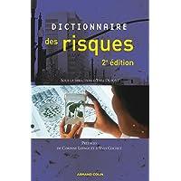 DICTIONNAIRE DES RISQUES 2ÈME ÉDITION