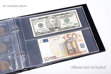 Amazon.com: Condorbox - Carpeta de papel con protectores de ...