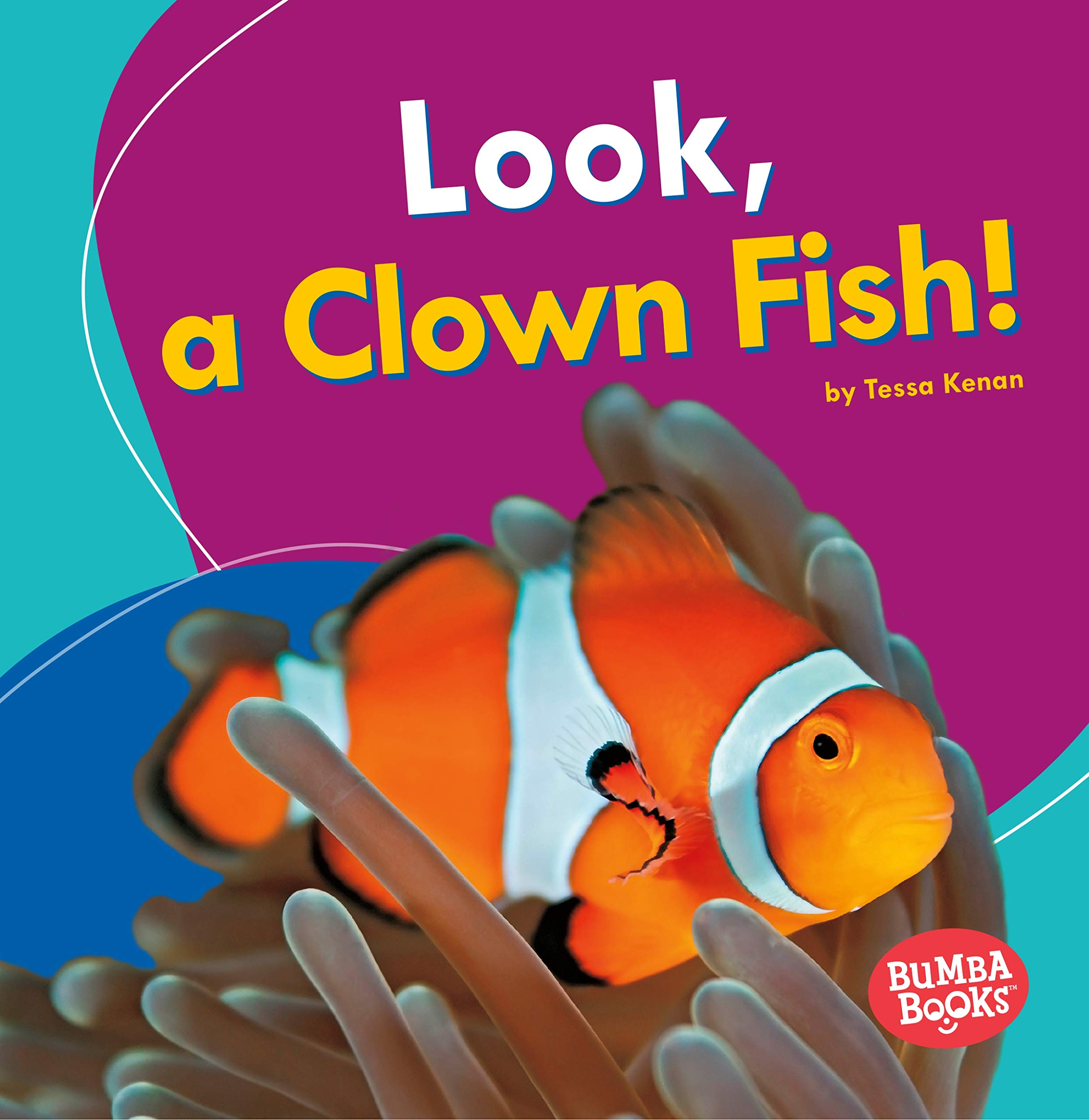 Download Look, a Clown Fish! (Bumba Books: I See Ocean Animals) pdf epub