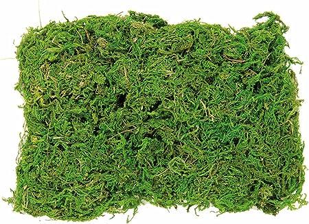 Ideal para manualidades y decoración.,Natural Moss,Disponible en varias formas.