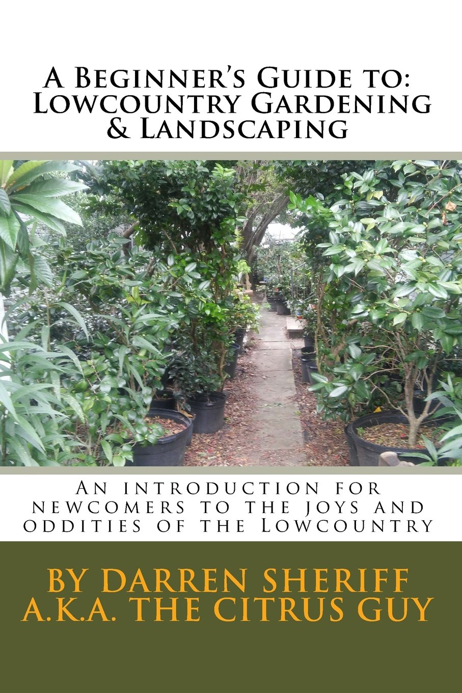 A Beginner S Guide To Lowcountry Gardening And Landscaping An