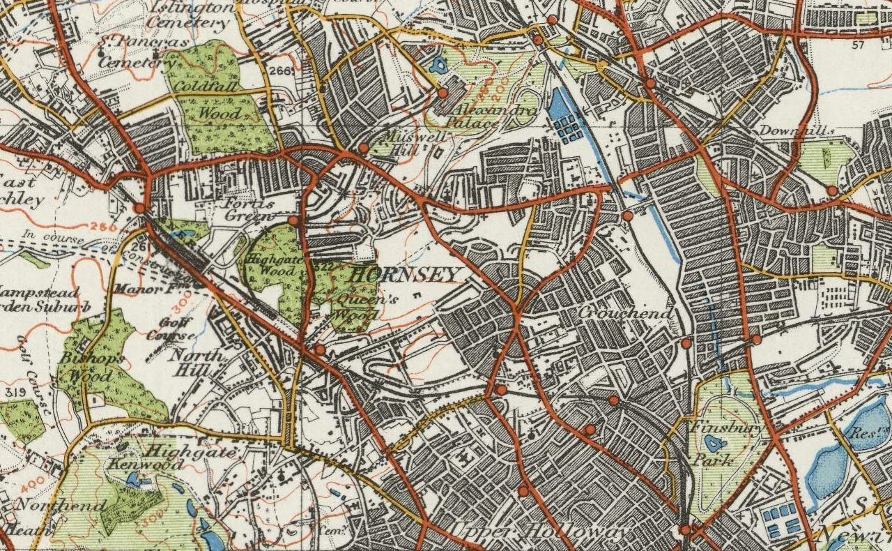 North East London /& Epping Forest Ordnance Survey of England and Wales 1920 Series Size 73 x 100 cm