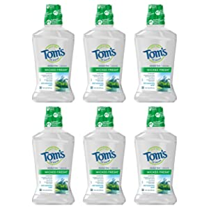 Tom's of Maine Wicked Fresh! Mouthwash, Natural Mouthwash, Cool Mountain Mint, 16 Ounce, 6-Pack