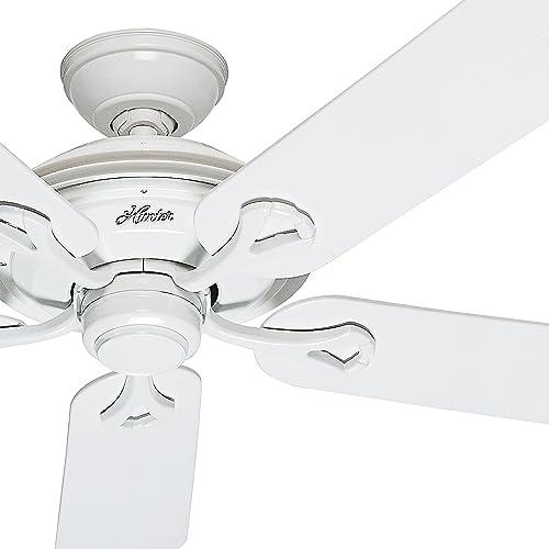 Hunter Fan 52in Outdoor ENERGY STAR Ceiling Fan