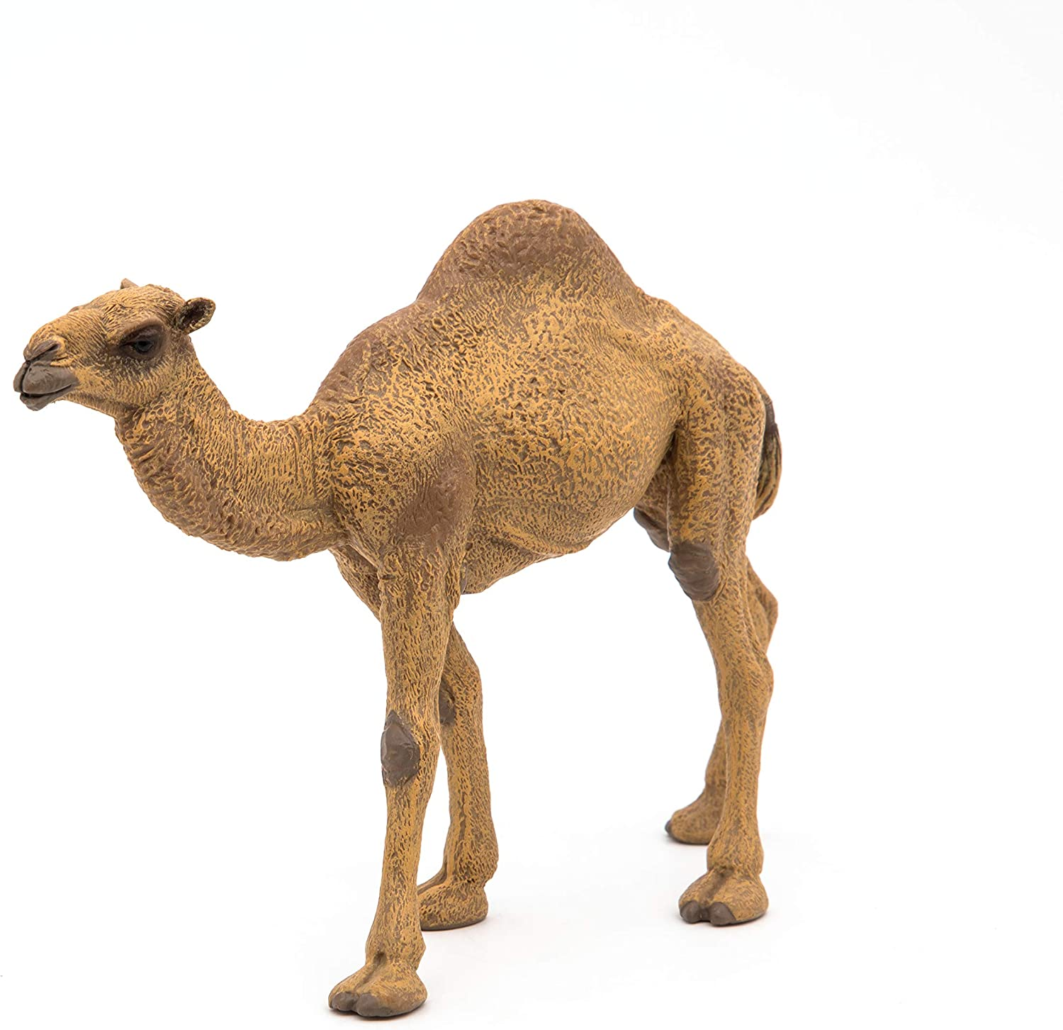 Dromedary Camel 5 7//8in Wild Animals Papo 50151