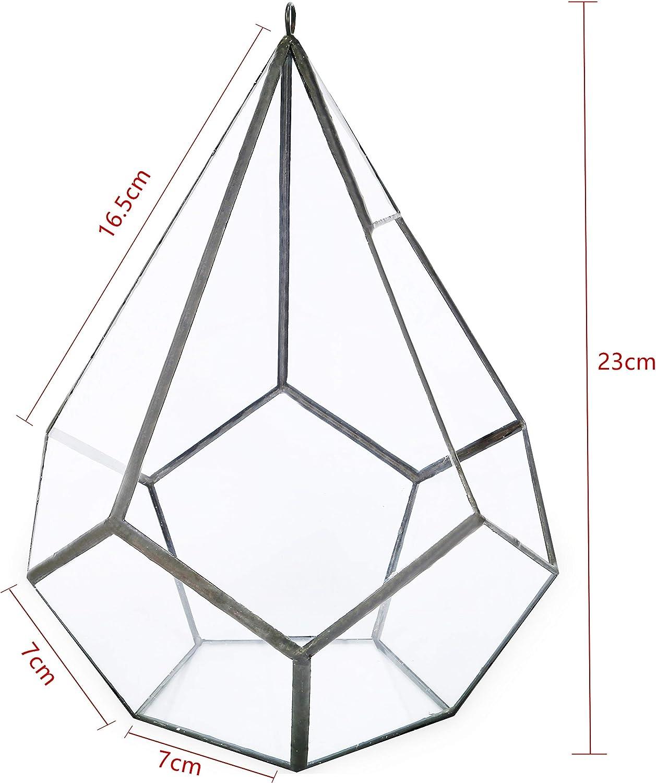 Alicemall Terrarium en Verre Transparent /à Suspendre 17.5 cm x 17.5cm x 23 cm Pot de Fleurs Formes Pyramide Moderne pour D/écoration Table Balcon Jardini/ère