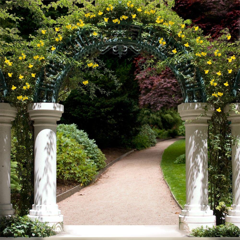 写真バックドロップ – ガーデンアーチツリーLined – 10 x 10 ft。 – 100 %シームレスなポリエステル   B00OABOAI8