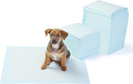 Amazonbasics Pet Training And Puppy Pads Regular And Heavy Duty