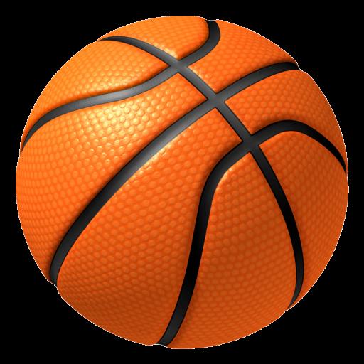 Hardwood Basketball (Selfie Basketball)