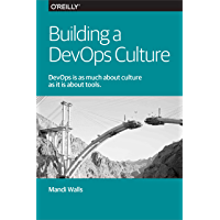 Building a DevOps Culture (English Edition)