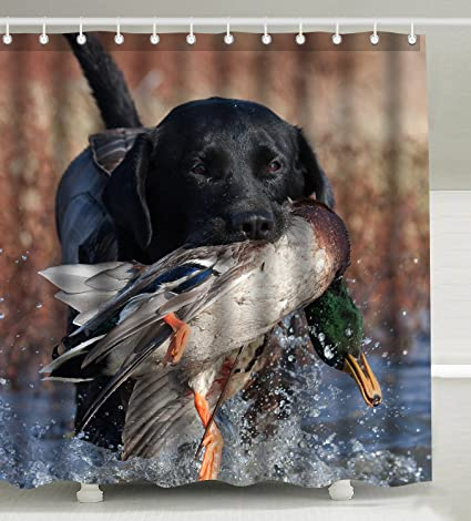 Wknoon 72 X Inch Shower Curtain With Hooks Duck Hunting Dog Cool Black Puppy