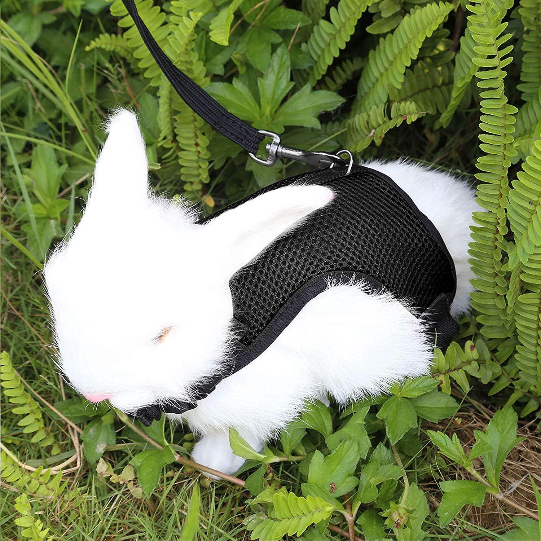 Petcomer Arnés Conejos con Correa Elástica para Animales Pequeños Conejos Hámsteres Gatos(S, Negro)