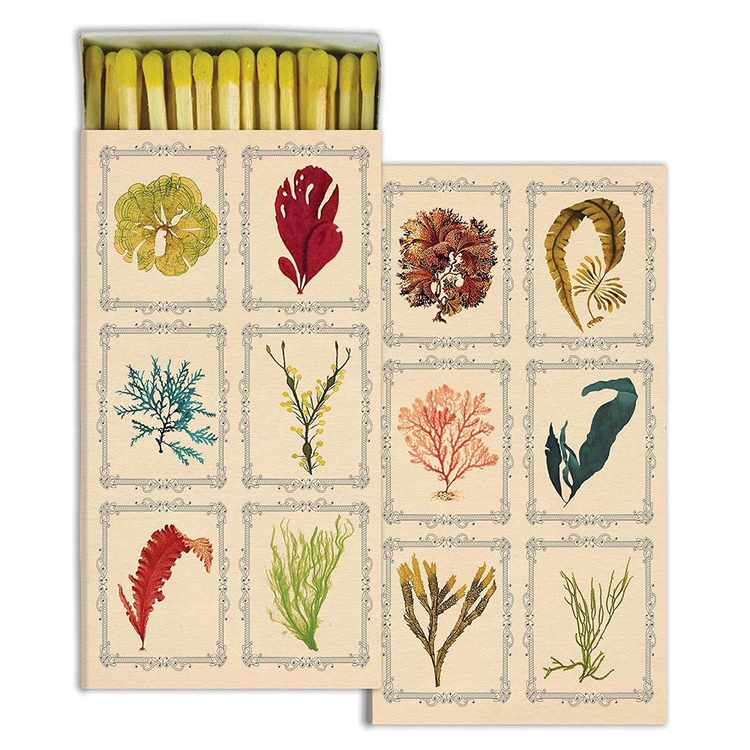 HomArt Large Decorative Kelp Match Boxes (Set of 12)