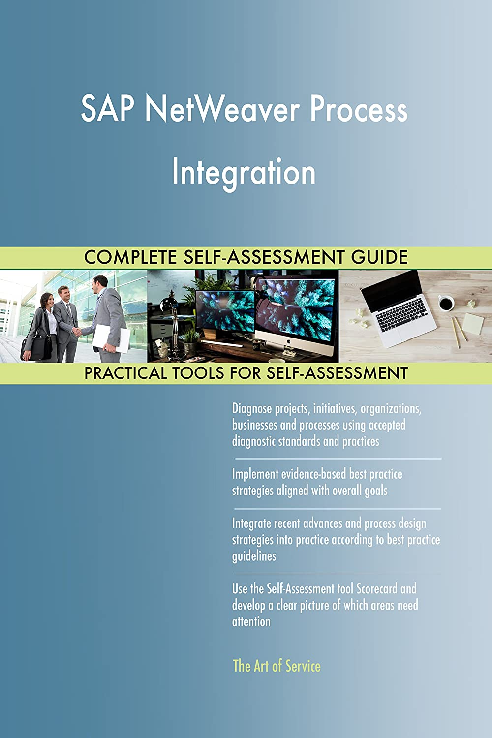 Amazon.com: SAP NetWeaver Process Integration All-Inclusive Self-Assessment  - More than 660 Success Criteria, Instant Visual Insights, ...