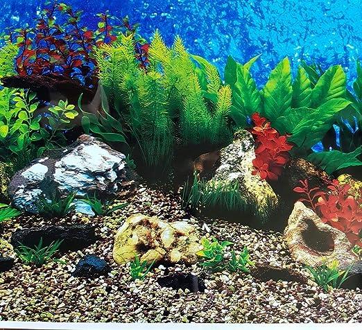 Fish & Aquatic Pets Pet Supplies Karen Low 20 Inch Height Double ...