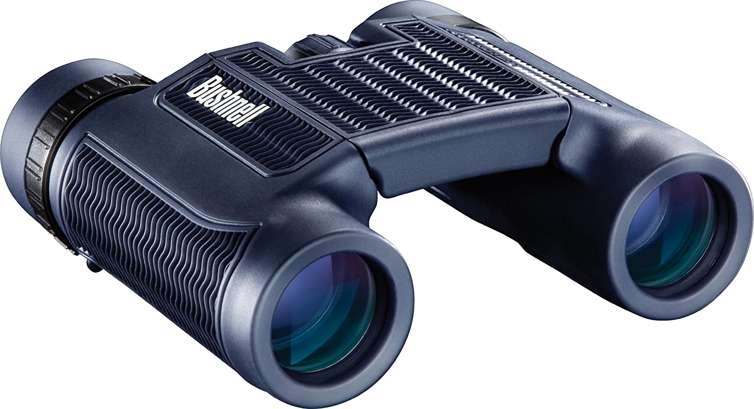 Amazon.com : Bushnell H2O Waterproof Compact Roof Prism Binocular, 10 x  25-mm : Camera & Photo