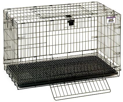 45a80b30953e Amazon.com : Pet Lodge Popup Rabbit Cages 150910 : Pet Supplies