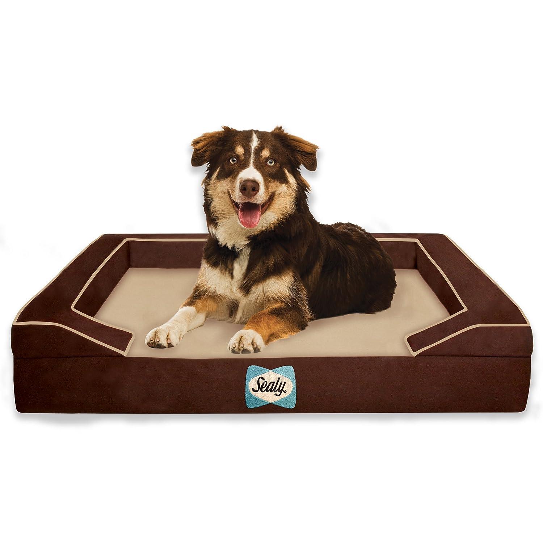 Sealy Lux Quad Capa Cama ortopédica para Perros con refrigeración Gel: Amazon.es: Productos para mascotas