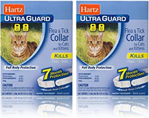 Hartz Ultra Guard Flea and Tick for Cat and Kitten Collar (2-Pack)
