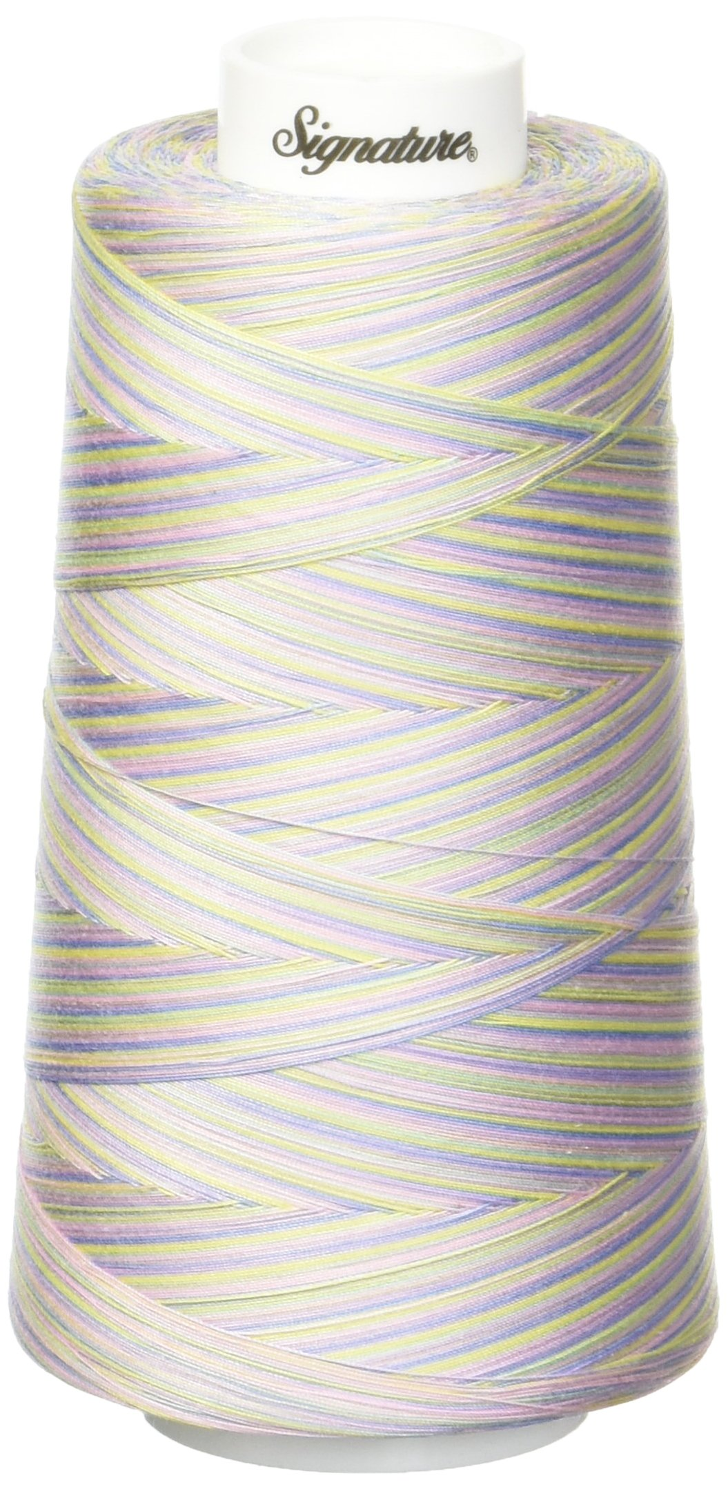 Signature Pastels Thread, 40wt/3000 yd, Variegated by Signature
