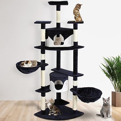 Leopet – Árbol rascador para gatitos de techo alto (2,04