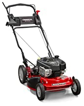 Commercial Variable Speed 190CC