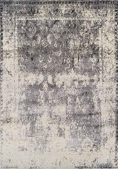 Dalyn Rugs Antiquity AQ1330 Area Rug - the best living room rug for the money