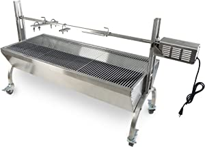 TITAN GREAT OUTDOORS Rotisserie Grill Roaster Stainless Steel 25W 125LBS Capacity BBQ Charcoal Pig