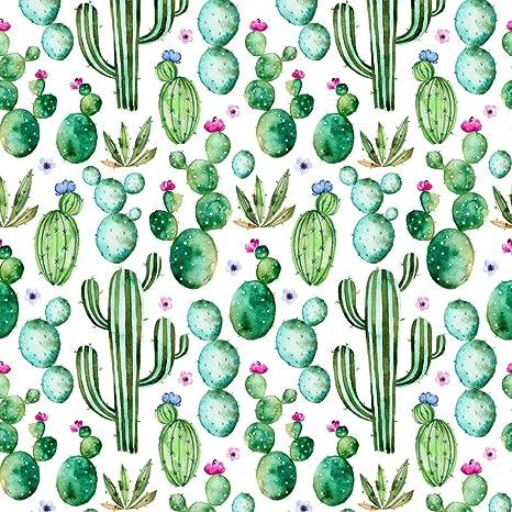 Amazon Com Huayi Cactus Plants And Purple Flowers Background