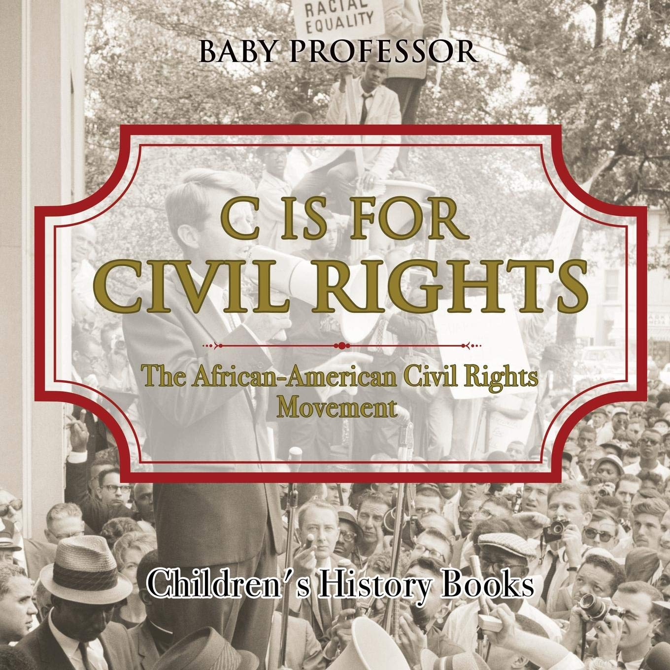 C is for Civil Rights : The African-American Civil Rights Movement  Children's History Books ebook
