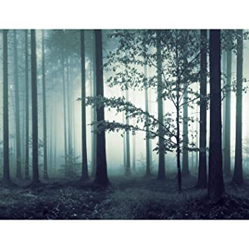 Fototapete Wald Nebel Vlies Wand Tapete Wohnzimmer