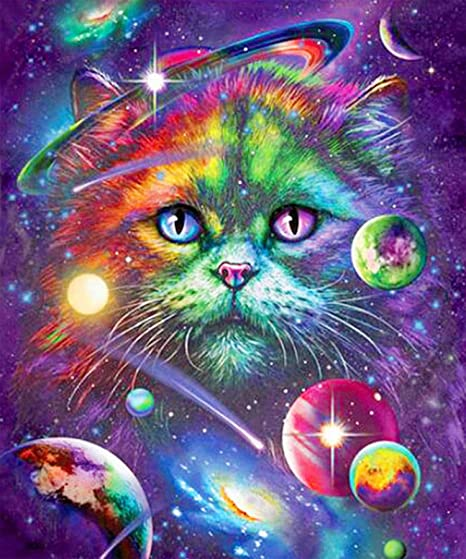 5D Beaded Painting Kits Cats Diamond Painting Picture