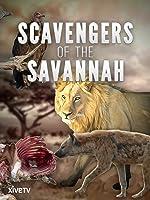 Scavengers of the Savannah