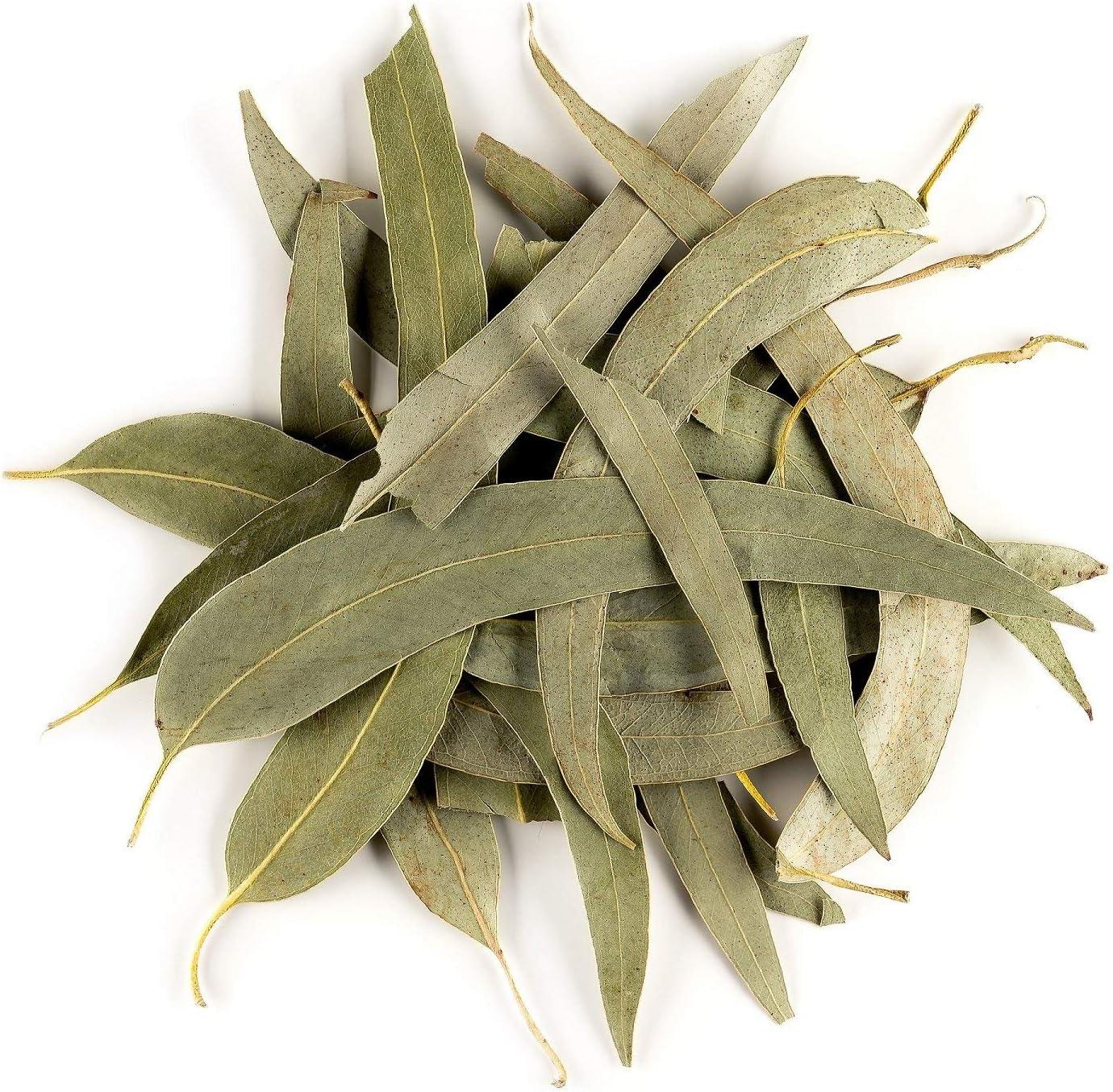Eucalipto Hoja Suelta Infusión Orgánico - Suave Y Balsámico Para La Garganta - Eucalyptus Bio Eucaliptus 50g