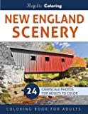 New England Scenery: Grayscale Photo Coloring for Adults
