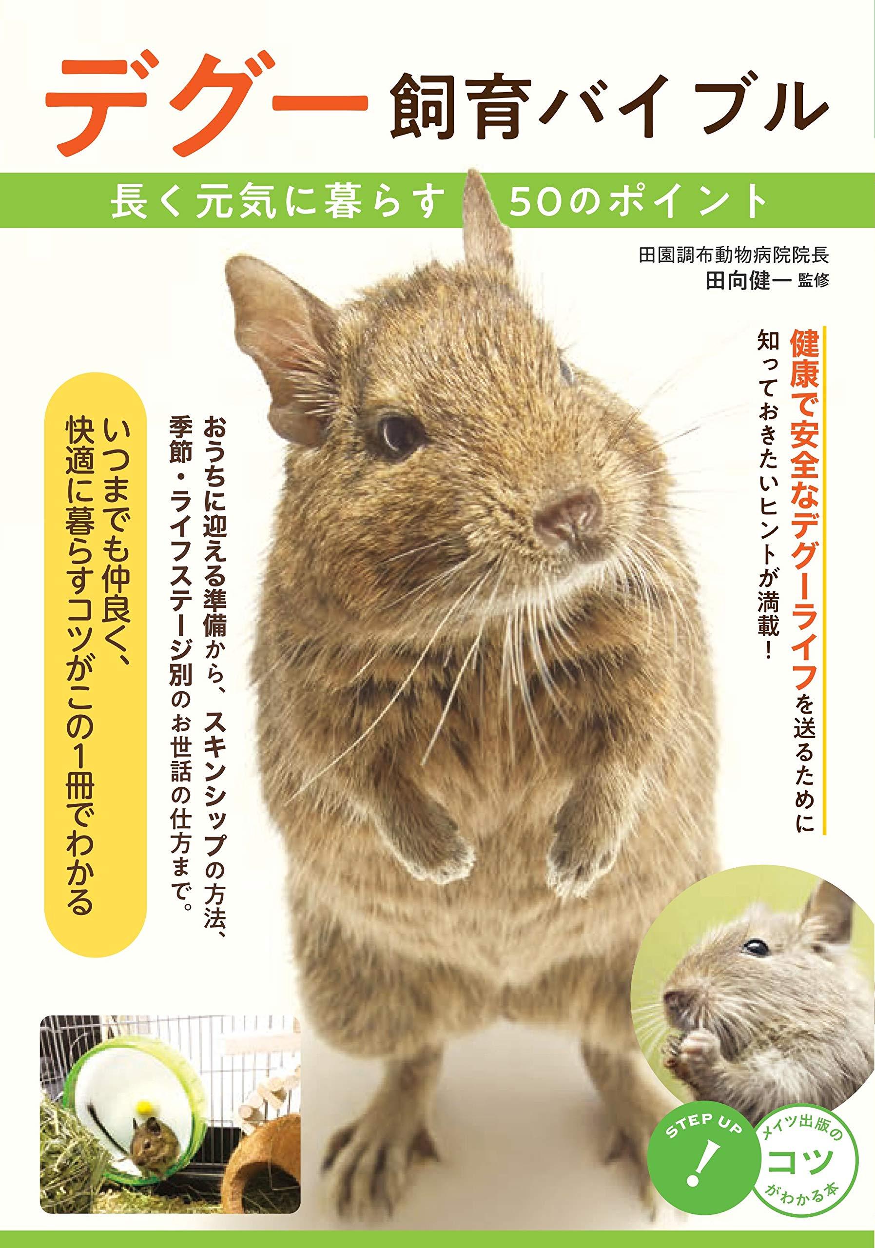 寿命 デグー 【ネズミ目】デグーの寿命は何年?ペットに最適?生態や大きさを徹底解説!