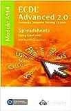 ECDL Advanced Syllabus 2.0 Module AM4 Spreadsheets Using Excel 2007: Module AM4 (Ecdl Advanced 20)