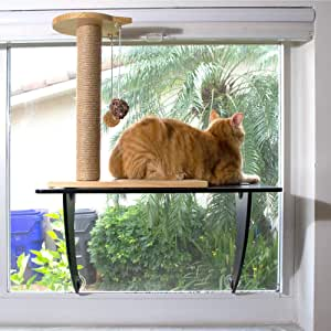 STAUBER Best Bamboo Cat Window Perch - Renewable and Eco Friendly! (Black, Scratching Post)