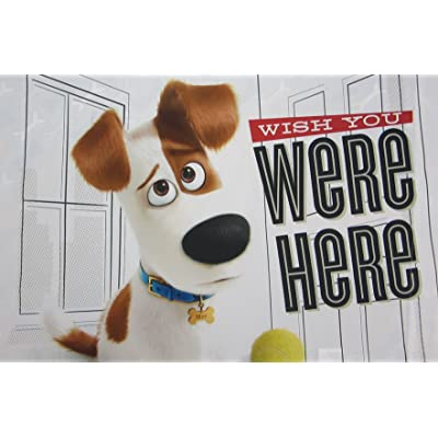 Secret Life of Pets Wish You Were Here (Pillowcase Only) Size STANDARD Boys Girls Kids Bedding: Baby