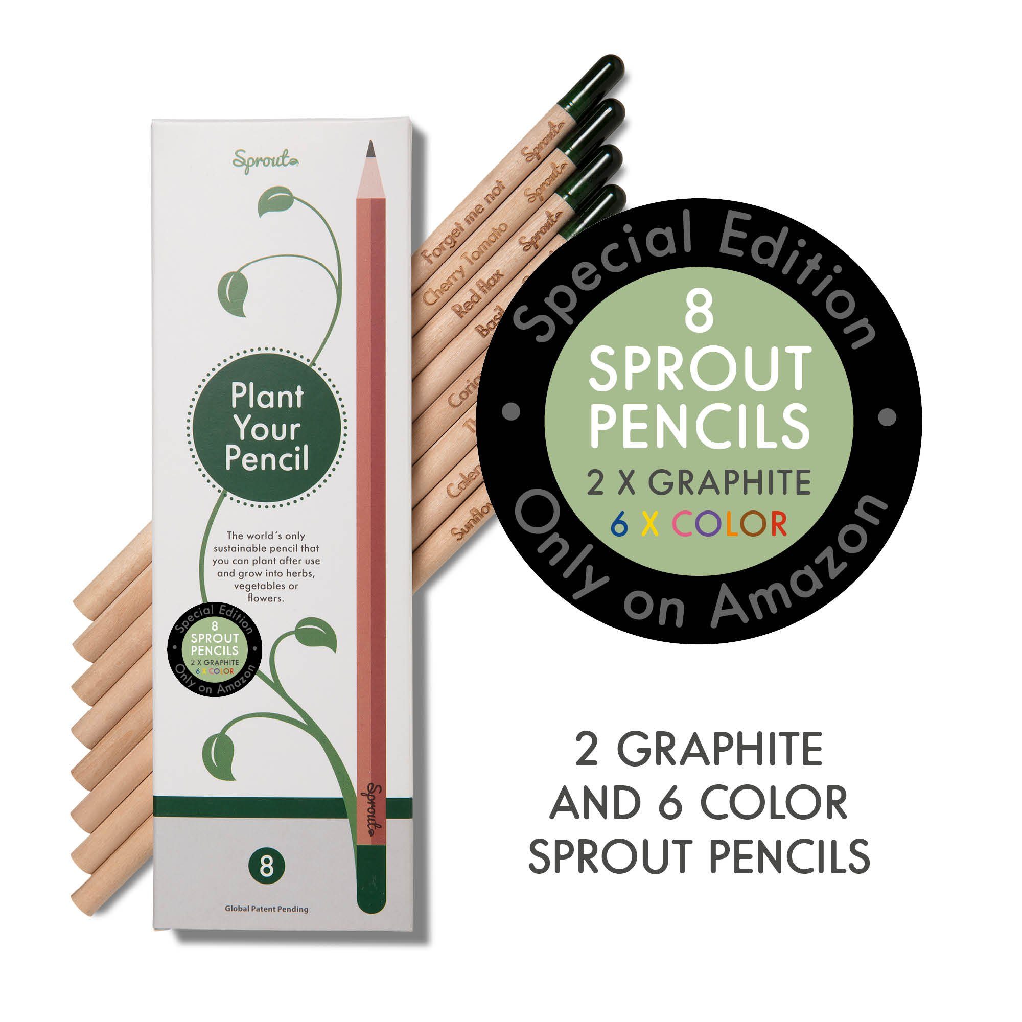 Sprout plantable coloring pencils with seeds |Box of 8| in natural sustainable wood | perfect for coloring books. by Sprout