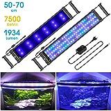 Main Luz LED, iluminación Acuario Acuario Blanco Azul Rojo Verde luz 7,5 W