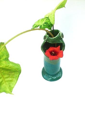 Amazon Ceramic Frog Vase Green Pencil Holder Art Pottery