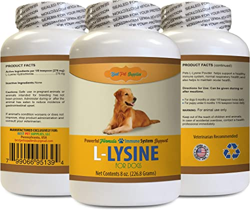 BEST PET SUPPLIES LLC Dog Amino acids – L LYSINE for Dogs Powder – Powerful Immune System Support – Mix with Food – Skin Eye and Bone Health – Oral lysine for Dogs – 1 Bottle 8 OZ
