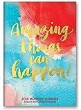 Orange Circle Studio 2018 Monthly Pocket Planner, Aug. 2017 - Dec. 2018, Amazing Things Can Happen!