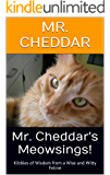 Mr. Cheddar's Meowsings!: Kibbles of Wisdom from a Wise and Witty Feline
