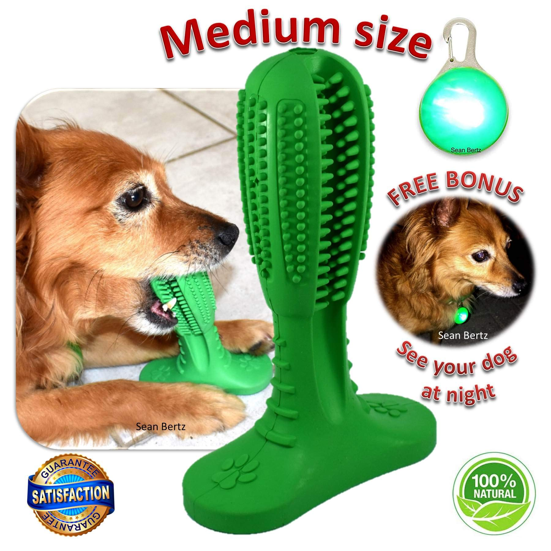 Dog Toothbrush Stick Small Dogs Teeth Cleaning Chew Toys Puppies Dental Care Brushing Stick Puppy Tooth Brush Effective Doggy Tooth Cleaner Bite Resistance Chewing Toy for Pets all Breeds Medium Breed by Sean Bertz
