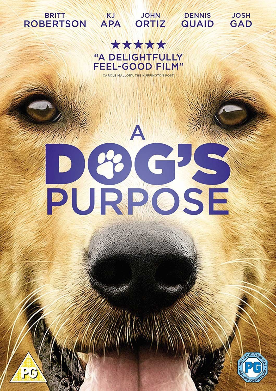 Amazon Com A Dog S Purpose Dvd 2017 Movies Tv