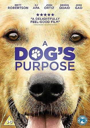 A Dog's Purpose 2017 1080p English 6CH 1.4GB BluRay x264
