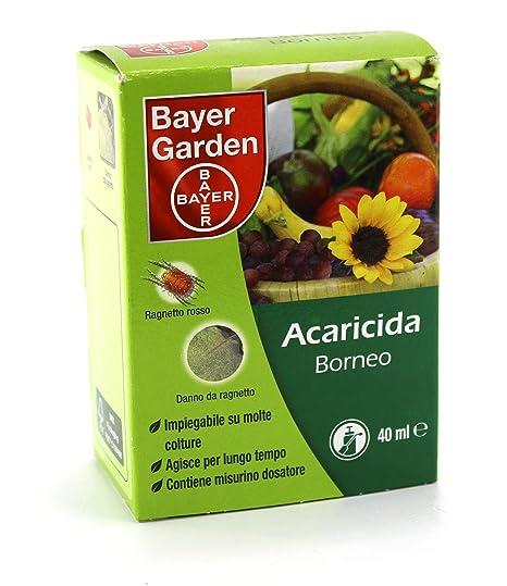 Bayer Borneo insetticida acaricida contro il ragnetto rosso 40 ml ...